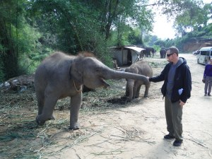 Hubby Hobo feeding the baby elephant at the rescue centre.