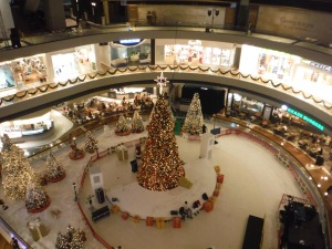 The covered the skating rink in the shopping mall for the Christmas display.