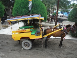 Transportation on Gili G